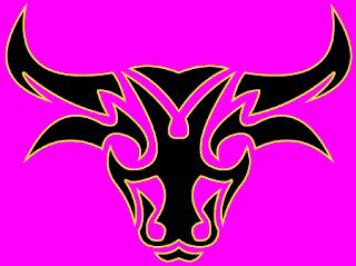 Taurus zodiac sign characteristics