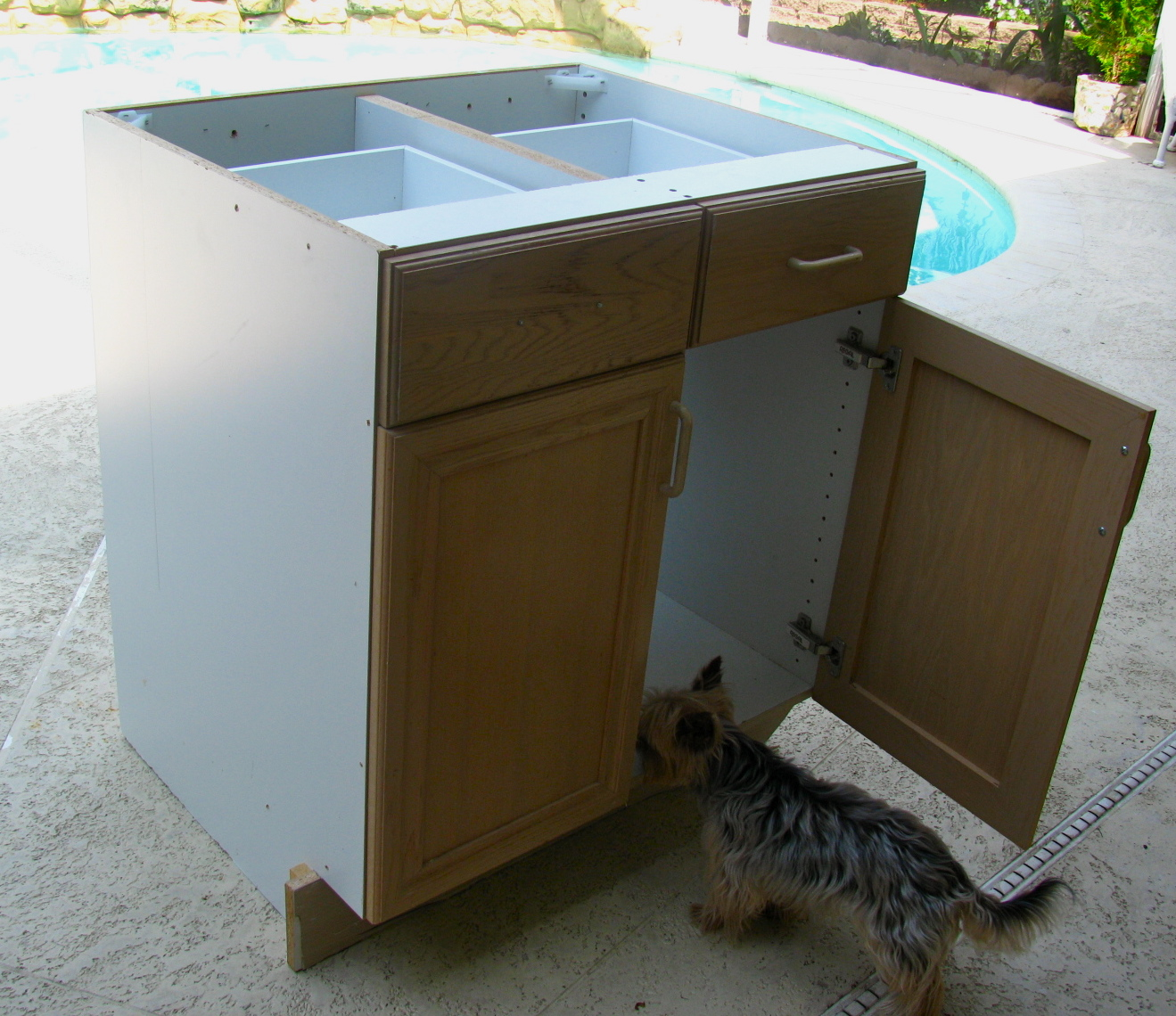 Kitchen Cabinet Salvage: MAY DAYS: Salvage A Kitchen Cabinet