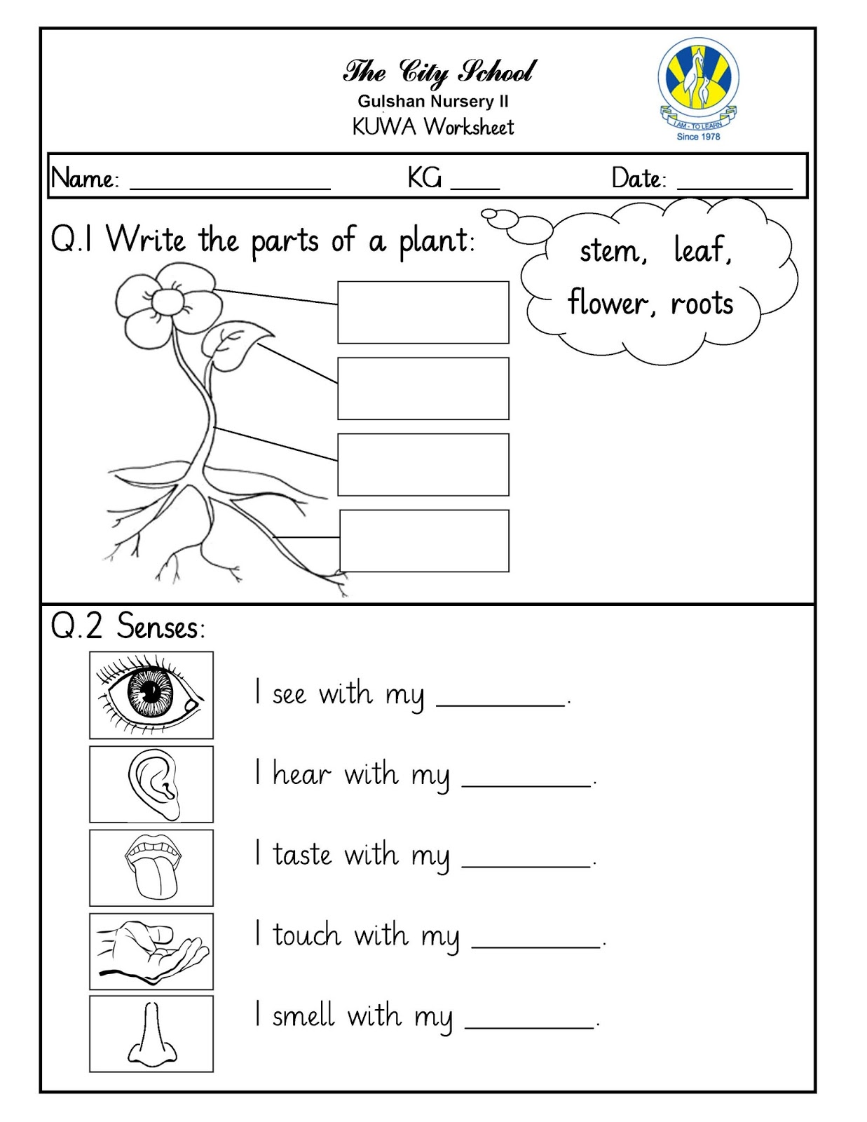 Sr Gulshan The City Nursery Ii Kuwa And Math Worksheets