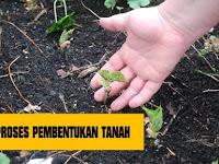 Proses Pembentukan Tanah dan Faktor-Faktor Pembentuknya