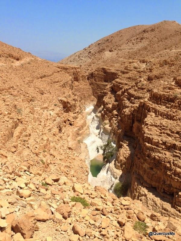 Cañón Seco de Wadi David