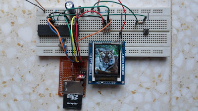 Tiger Bitmap picture on ST7735 SPI TFT display with PIC18F4550 and SD card