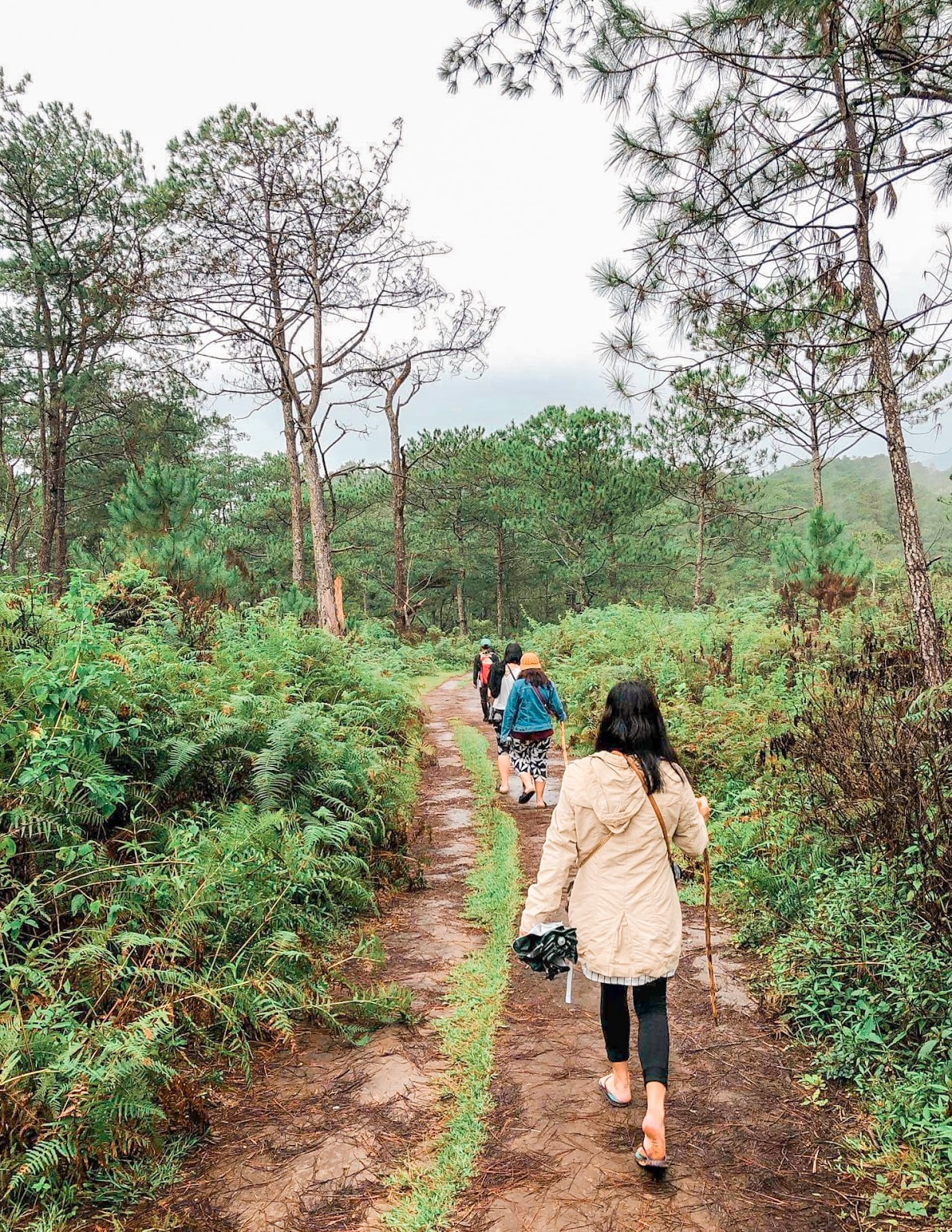 Marlboro Hills, The Unexpected 4N3D Baguio-Sagada Adventure