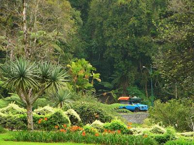 Kebun Raya Bogor atau Istana Bogor