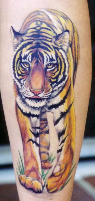 tiger tattoo 01