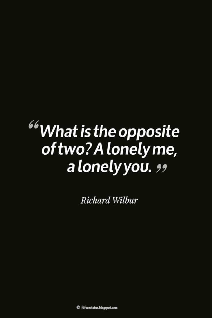 Heartbroken Quotes, What is the opposite of two? A lonely me, a lonely you. ― Richard Wilbur, quotes about heartbroken