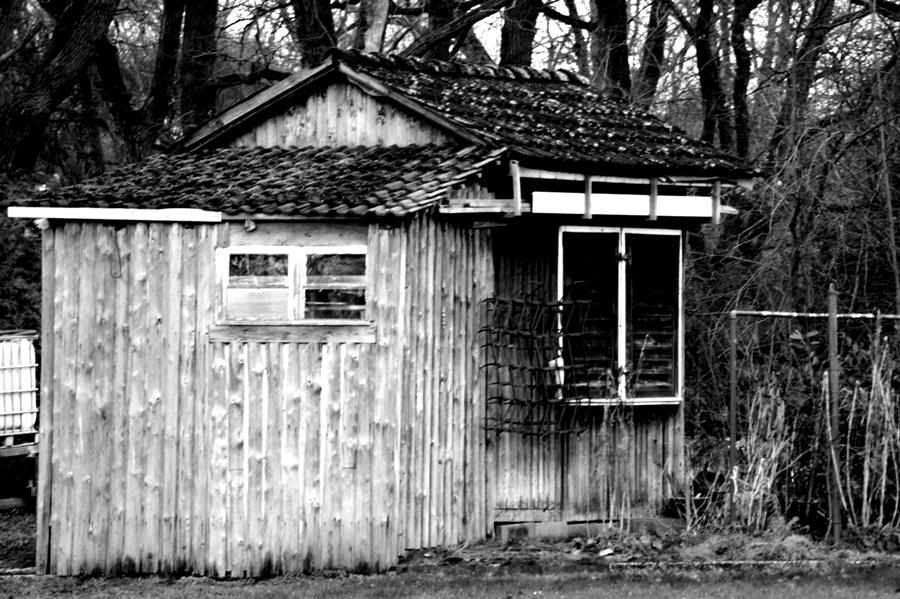 Blog + Fotografie by it's me! - #FiveDayBlackandWhiteChallenge - Schrebergartenhütte