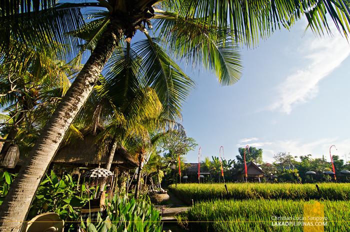Bebek Tepi Sawah Villas Ubud Rice Paddy