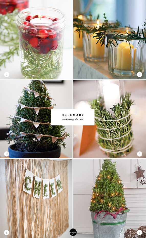 24 ways to decorate with rosemary this holiday | Rosemary holiday decor