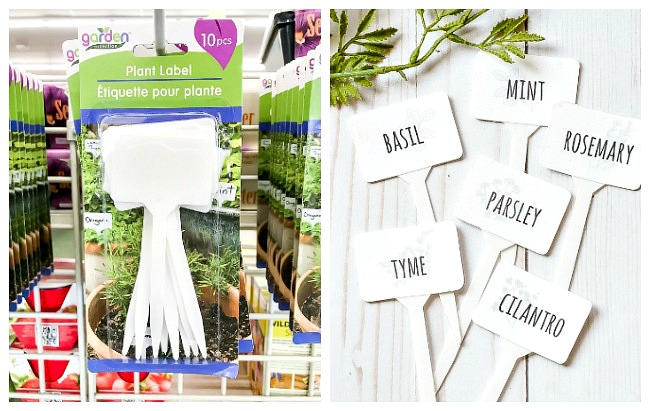 Dollar tree plant markers