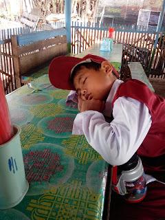 Piknik Kemana, Jakarta Naik City Tour atau Piknik ke Bogor?