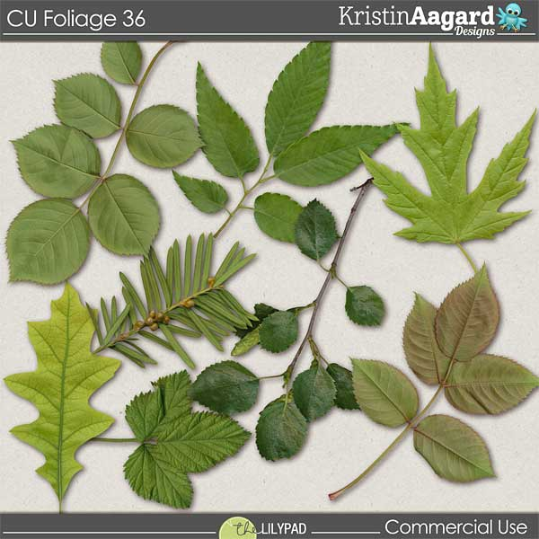 http://the-lilypad.com/store/digital-scrapbooking-cu-foliage-36.html