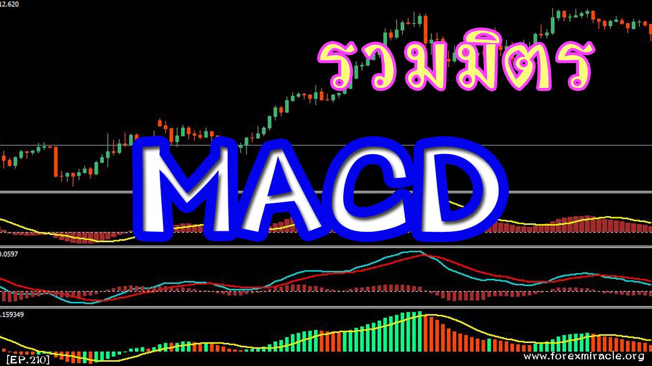 Forex expert advisor macd