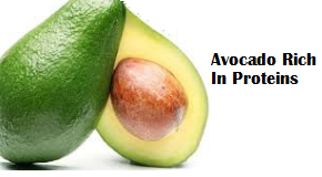 Amazing health benefits of Avocado Butter Fruit Makhanphal - Avocado Rich In Proteins