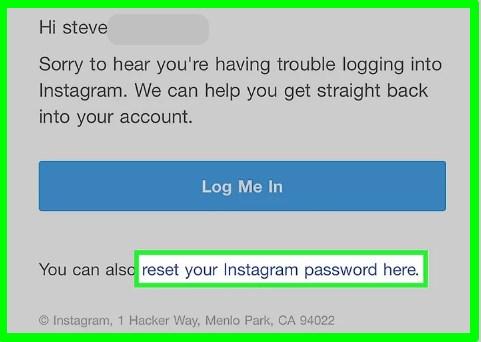 instagram password reset email