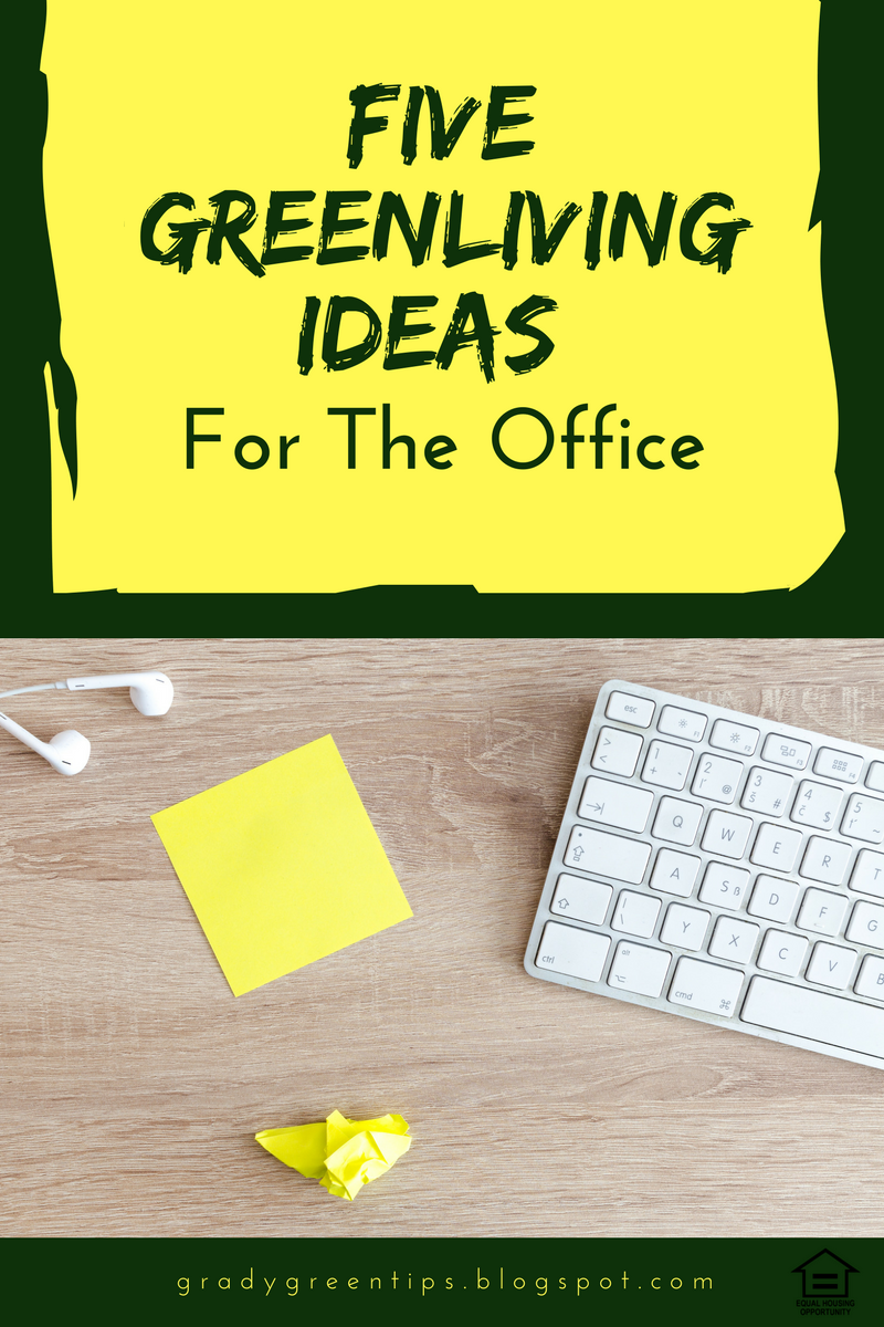 Easy Eco Friendly Tips For An Office Space
