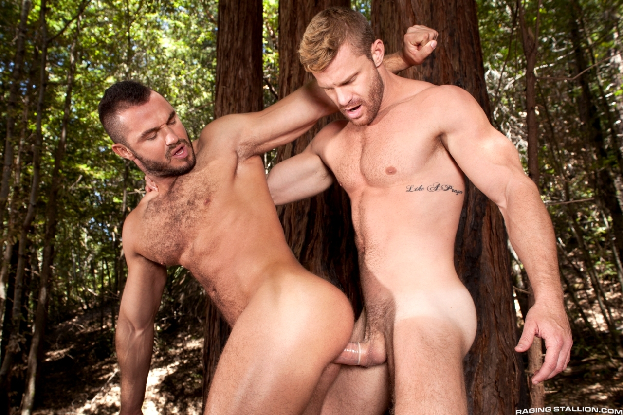 Theme, will jessy ares landon