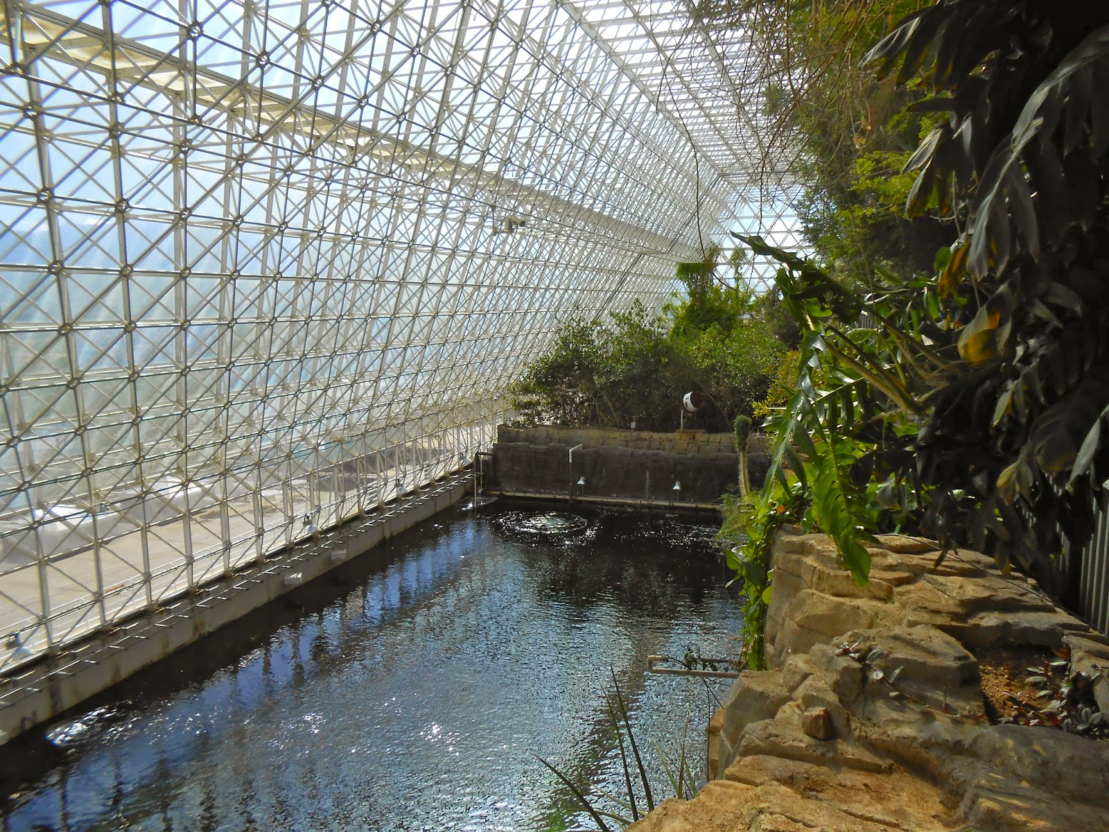 the ocean in the biosphere II attraction in oracle arizona