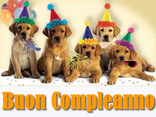 spesso Frasi d'Amore: Immagine di buon compleanno divertente con 4 cani WL61
