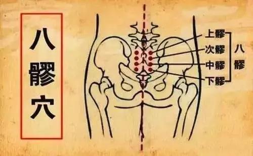 三伏灸八髎,直接給盆腔注入陽氣,通治婦科病(疏通氣血)