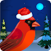 Games4Escape - Christmas Red Cardinal Escape