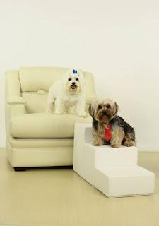 escadas para cães pequenos subir em sofá