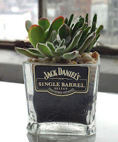 macetas de vidrio hechas con botellas recicladas