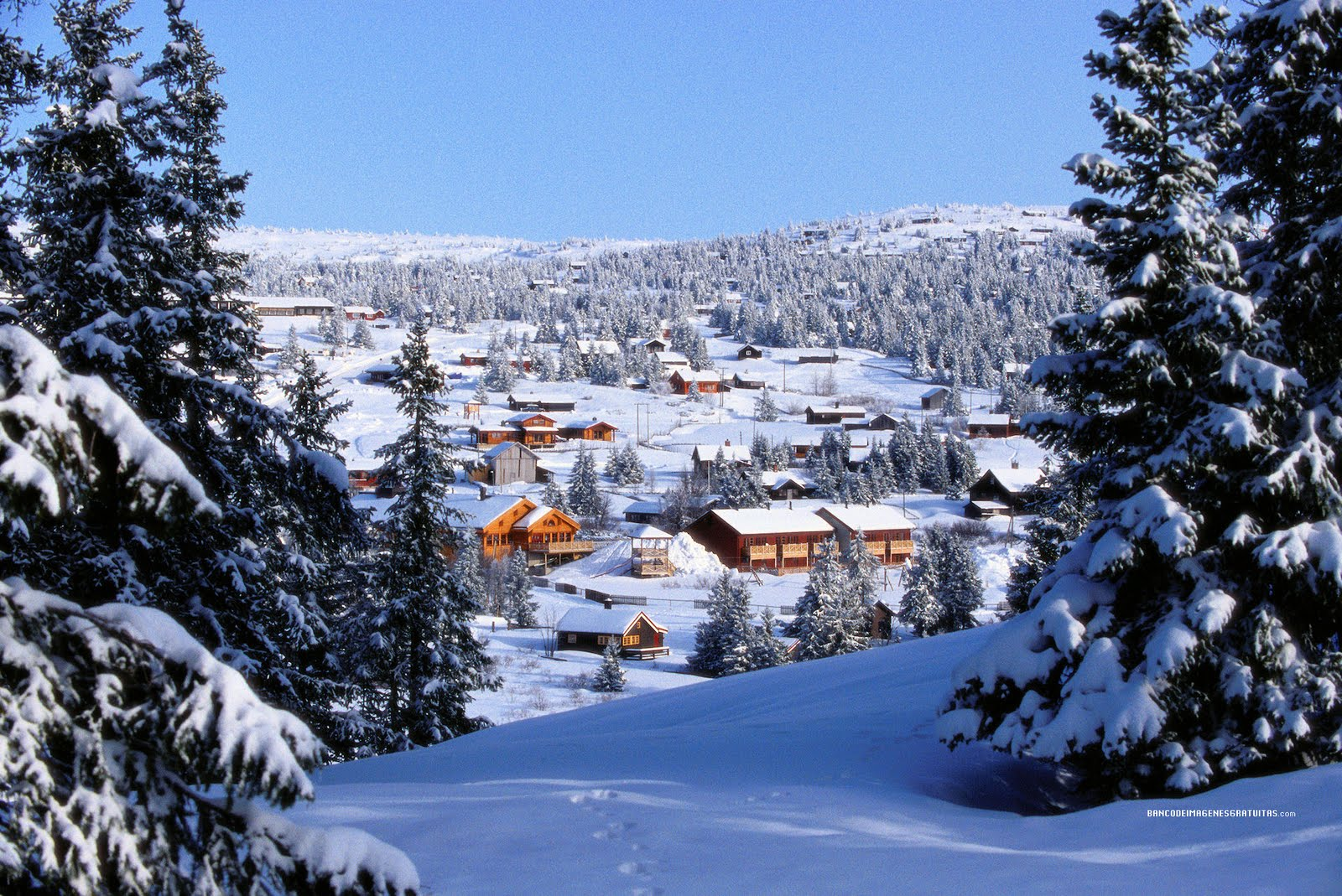 idool Paisajes nevados o snowscapes nieve en las montaas