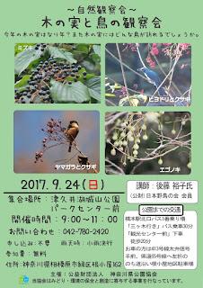 鳥と木の実の観察会