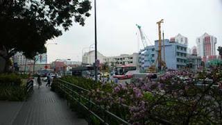 シンガポールの植物