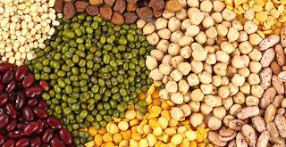 baklagiller, barbunya, fasulye, soya