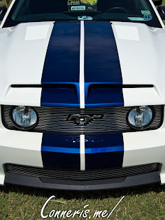 Ford Mustang Shelby Stripes