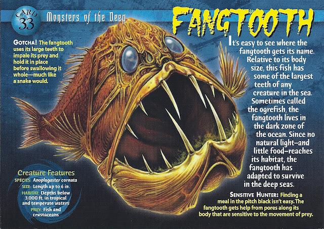ikan fangtooth hewan teraneh di dunia