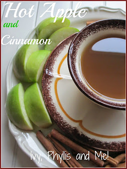 HOT APPLE AND CINNAMON DRINK