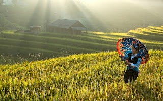 Super Quick Halong Sapa 4 Days - One of the hottest holiday packages in Vietnam 2