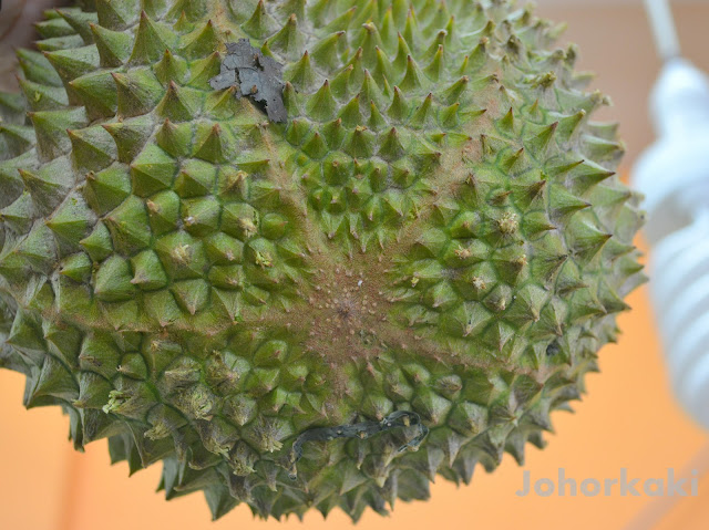 Mao-Shan-Wang-Durian