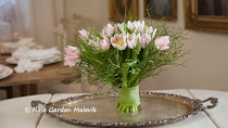 FILM / Movie , massor med bra tips