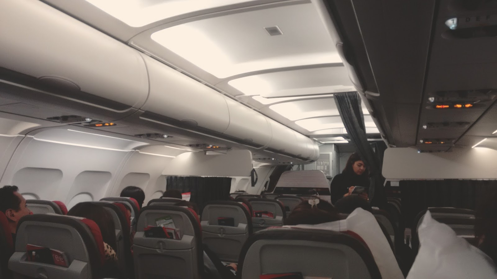 dentro-avião
