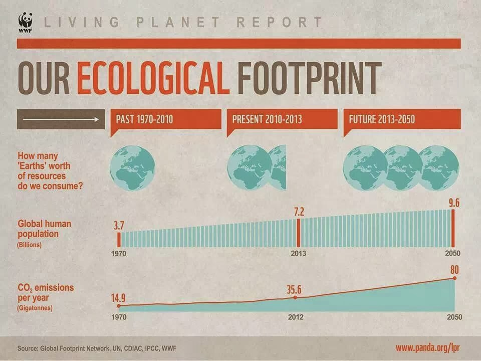 Greatest Environmentally friendly Footprints