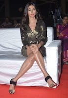 Pooja Hegde Latest Photos at DJ Duvvada Jagannadam Thanks Meet TollywoodBlog