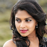 Actress Amala Paul in Saree
