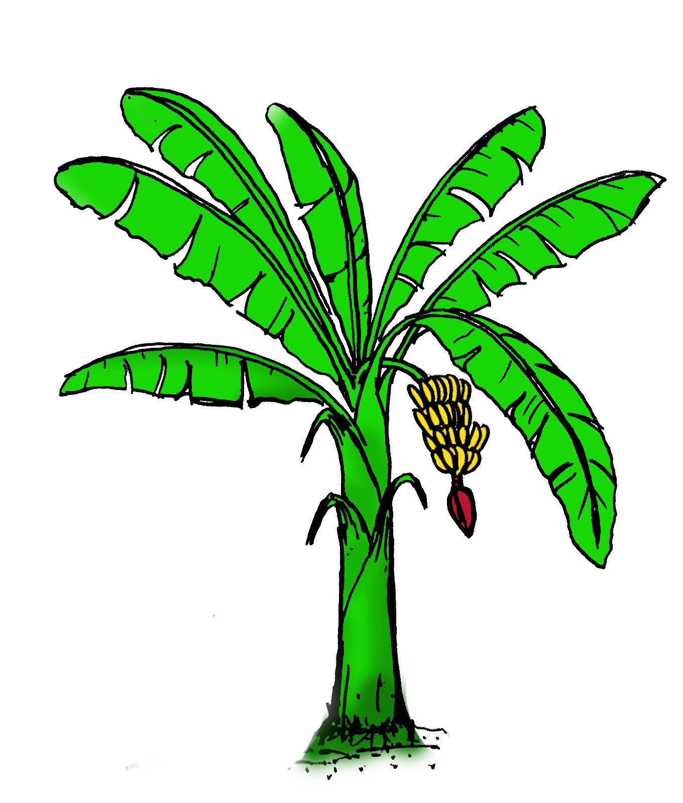69 animasi png animasi gambar pohon cikimm com 69 animasi png animasi gambar pohon