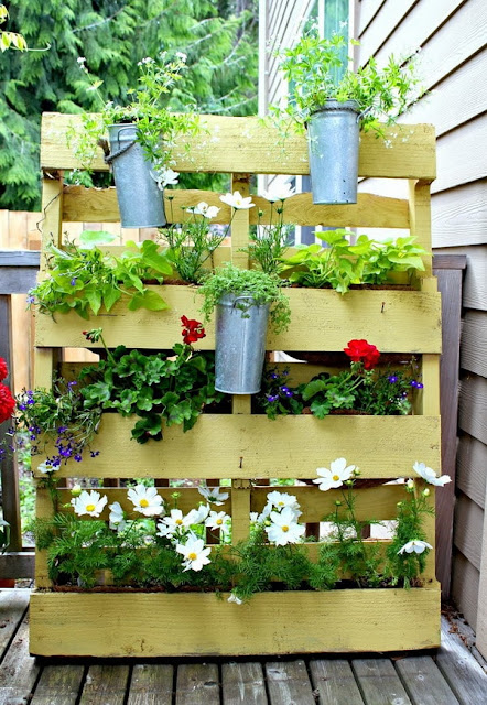 Vertical Gardens Made of Wooden Pallets 5