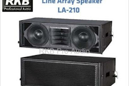 Skema box speaker line array 10 inch  double