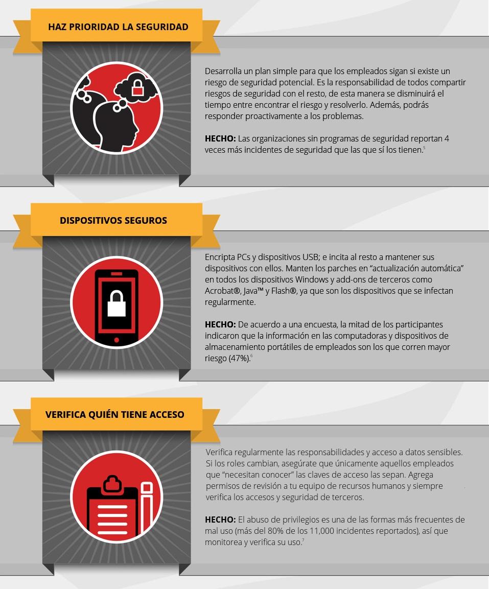Seguridad informática: Consejos de Seguridad Cibernética con infografía