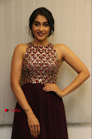 Actress Regina Candra Latest Stills in Maroon Long Dress at Saravanan Irukka Bayamaen Movie Success Meet .COM 0034.jpg