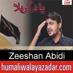 https://www.humaliwalyazadar.com/2018/09/zeeshan-abidi-nohay-2019.html