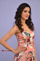 Actress Richa Panai Pos in Sleeveless Floral Long Dress at Rakshaka Batudu Movie Pre Release Function  0033.JPG