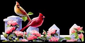 разделители для текста, разделители, для веб-дизайна, для сайтов, для блога, оформление текста, для оформления, для текста, для интернета, для страниц, украшения графические, дизайн графический, декор, декор для постов, декор для сайта, картинки, картинки для сайта,   птицы, разделители с птицами, зоо,зоопарк, утки, цыплята, голуби, попугаи, лебеди, синицы, куры, птички,