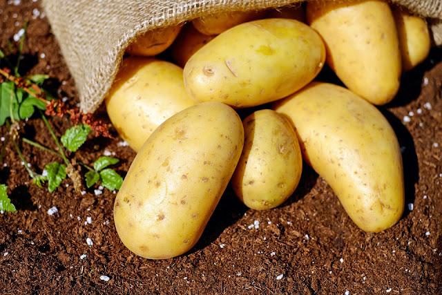 cocción patatas